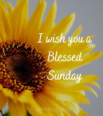 Blessed Sunday Wishes